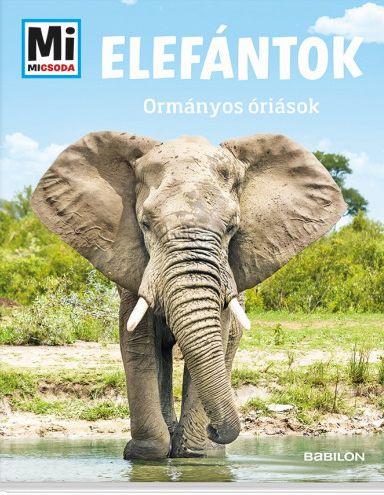 Andrea Weller-Essers: Elefántok - Ormányos óriások - Mi Micsoda