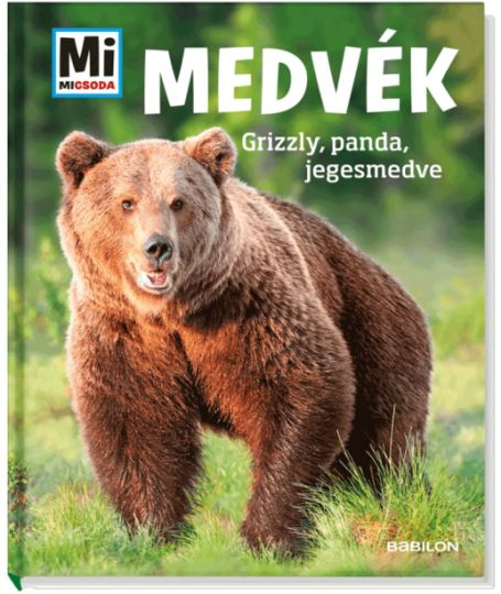 Alexandra Mayer: Medvék - Mi MICSODA