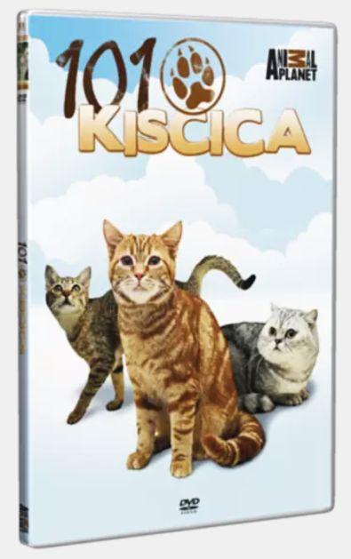 101 Kiscica - DVD